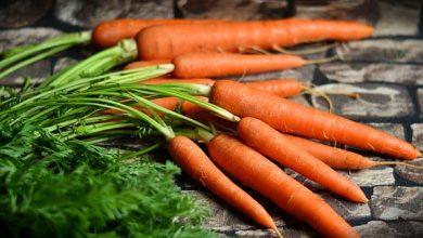 vitaminas da cenoura